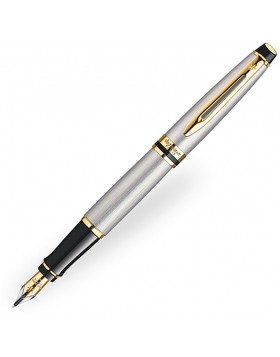 Waterman Expert III Stainless Steel GT Fountain pen